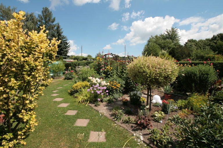 SWG Garten Hilbersdorf